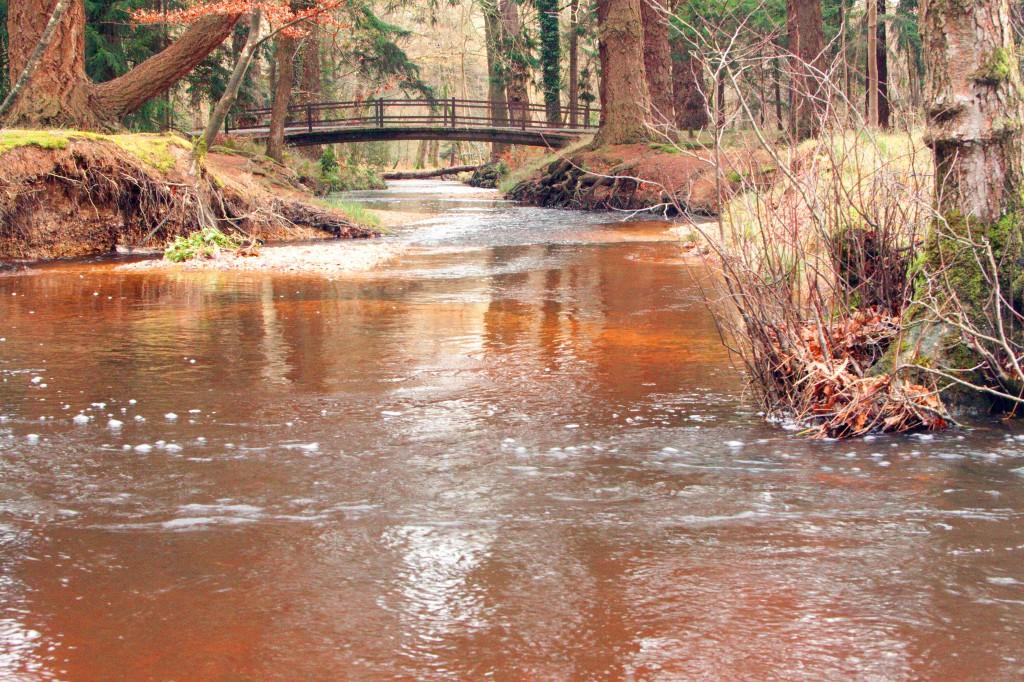 water bridge 3