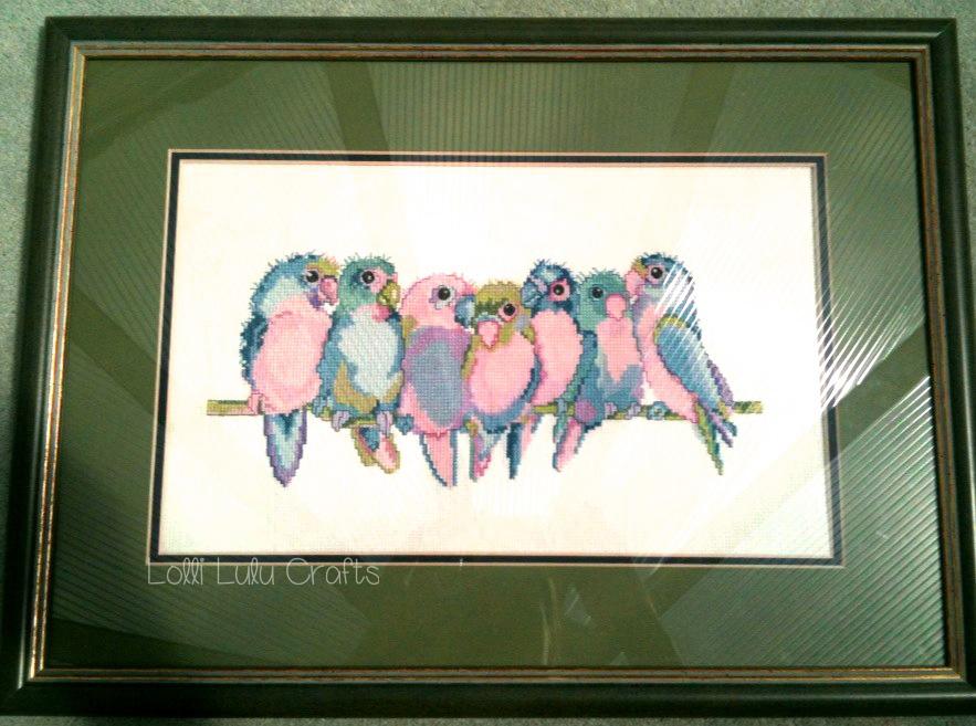 Slove birds