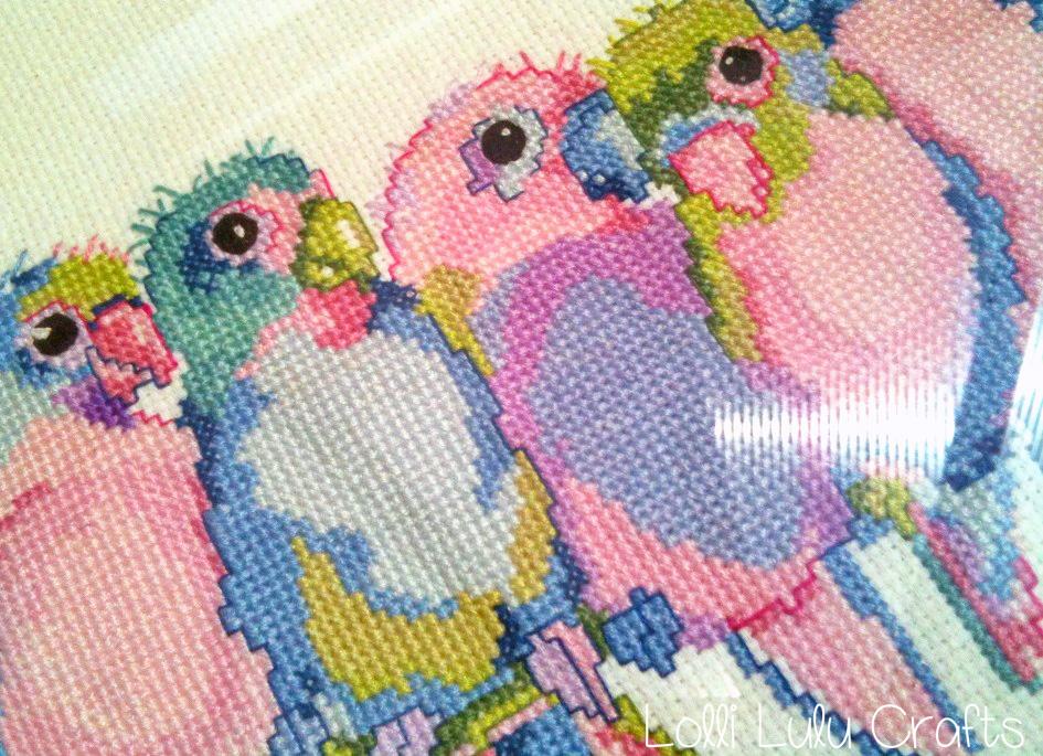 Slove birds2