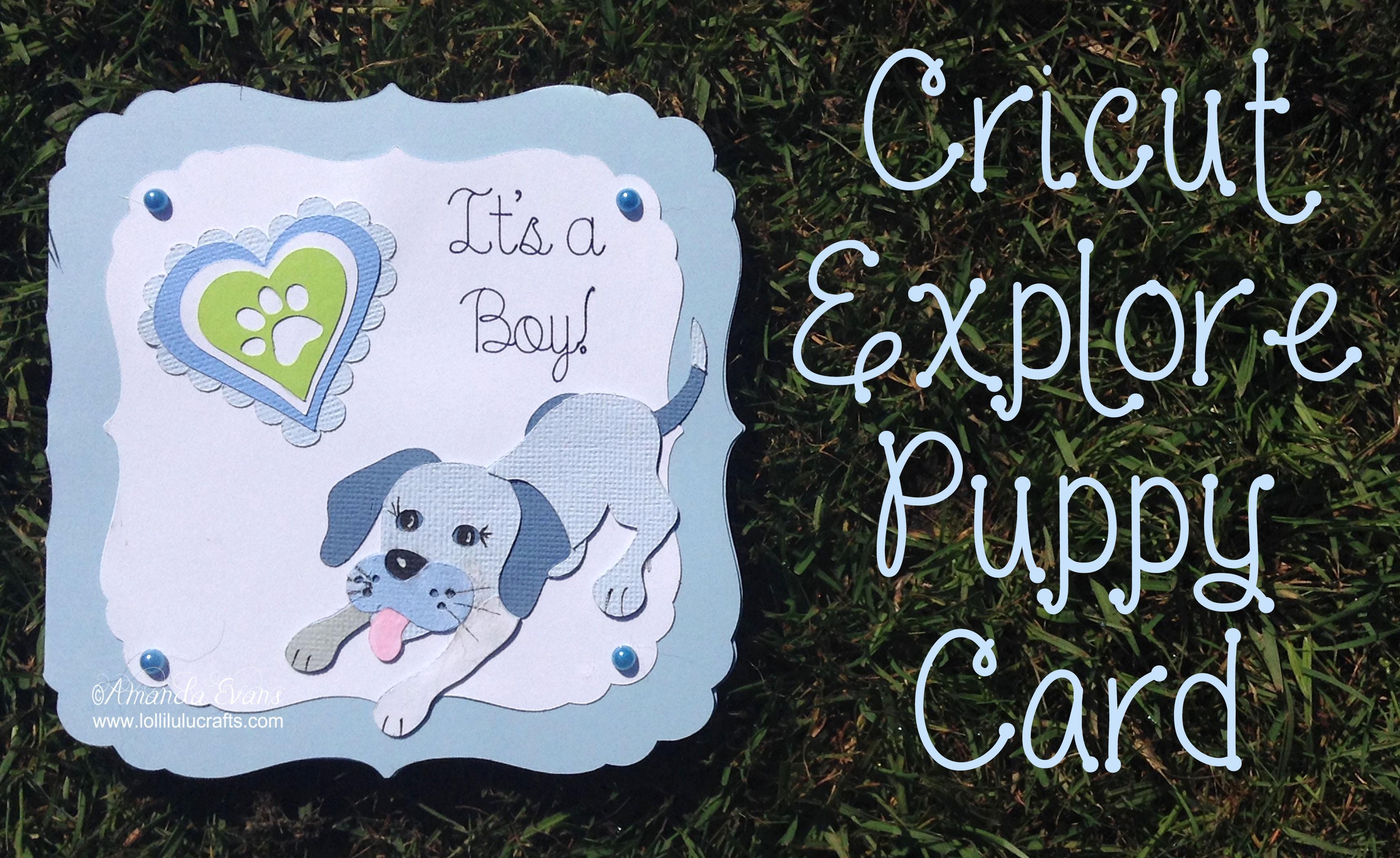 Puppy card Thumb Video & post